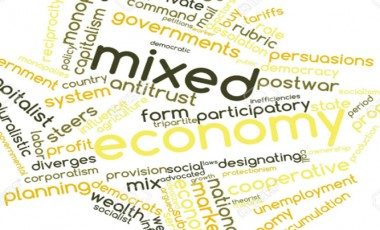 Entrepreneurs in a mixed economy